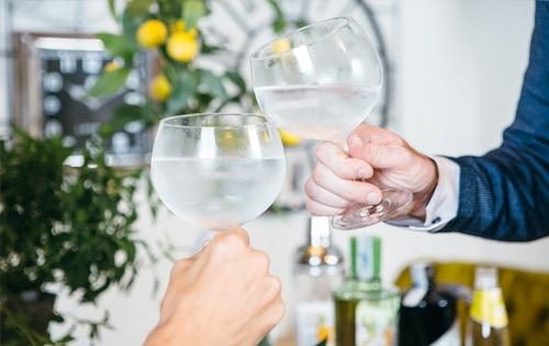 Como fazer gin tônica 2