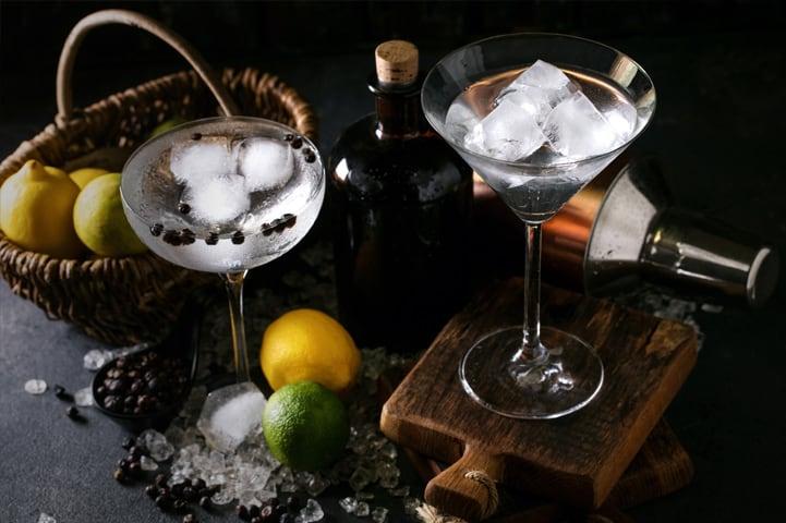 Veja como fazer gin tônica sem sair de casa
