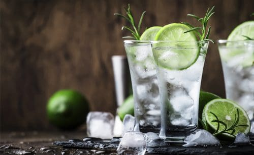 especiarias para colocar no gin