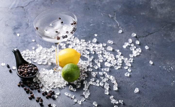 Veja dicas de como incluir especiarias para gin em seus drinks