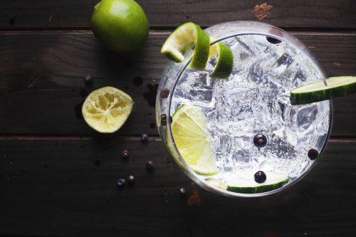 gin com especiarias